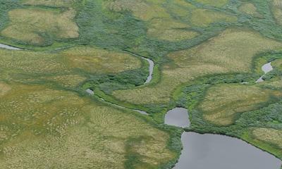 Mires in tundra region