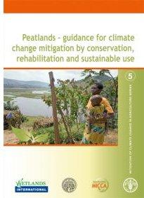 fao Peatland report